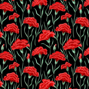 Red Carnations on Black