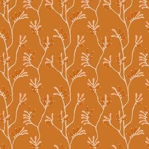 Copper Kangaroo Paw Australian Native by Erin Kendal Hand drawn floral