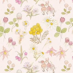 finnish wildflowers (blush)
