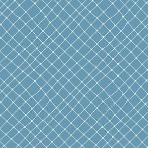 Small Fish Net in Blue Jean