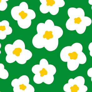 spring time daisies