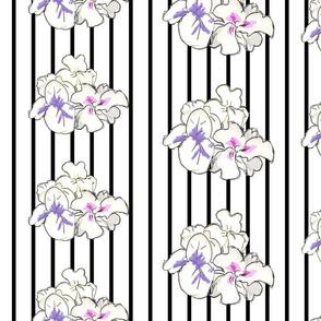 Irises Indeed
