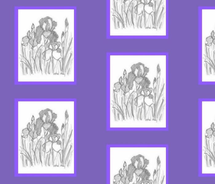 bearded iris in  blanket of multi violet blue