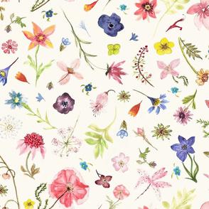 Sketchbook Native Flower Garden Hand Drawn
