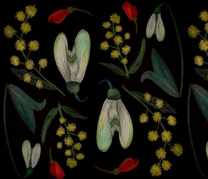 FleursEndemiques