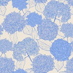 Dried Hydrangeas fields-Blue