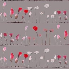 poppies stripe in grey