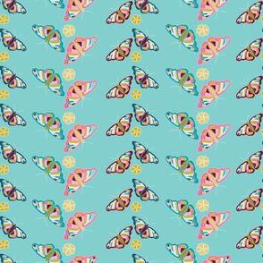 Butterfly Stripe