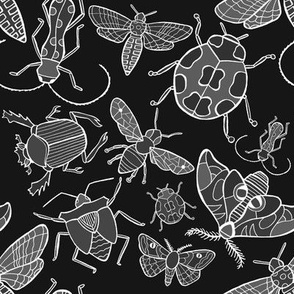 Stop Bugging Me - Black and White
