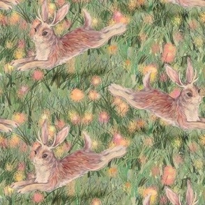 Jackalopes in the Cotton Candy Field