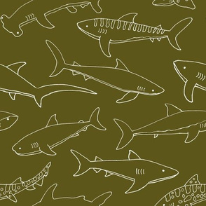 Types of Sharks - Brown