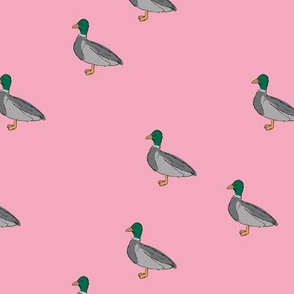 Duck duck and duck sweet spring nursery design kids pattern boho mallard friends green gray pink