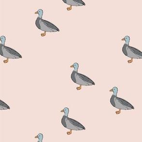 Duck duck and duck sweet spring nursery design kids pattern boho mallard friends gray on soft pale