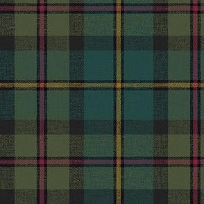 "MacLeod of Harris / green MacLeod / MacLeod hunting tartan, 6"" darkened muted, slubs and grey stripe"