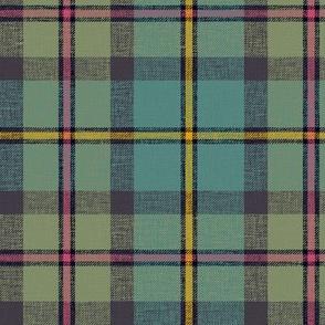 "MacLeod of Harris / green MacLeod / MacLeod hunting tartan, 6"" faded muted, slubs and grey stripe"