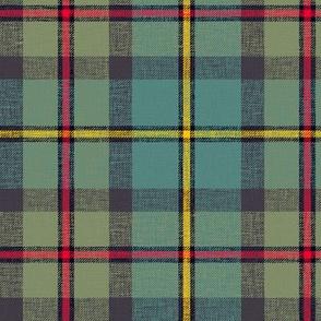 "MacLeod of Harris / green MacLeod tartan, 6"" muted faded, slubs, grey stripe and bright red/yellow"