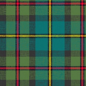"MacLeod of Harris / green MacLeod tartan, 6"" muted, slubs, grey stripe and bright red/yellow"