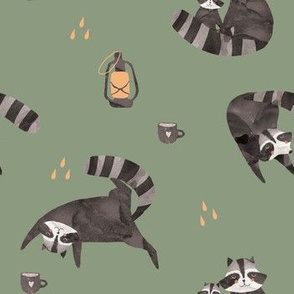 Raccoon green