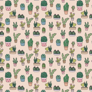 Succulents (sand)