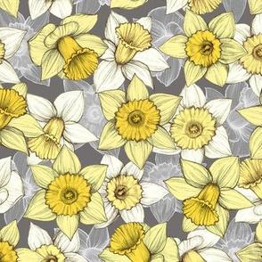 Daffodil Daze - Yellow, Grey & White floral pattern - medium