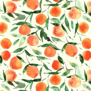 watercolor tangerines from Sicily - painted citrus fruits summer oranges a128-2