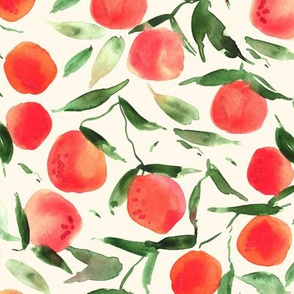 watercolor tangerines from Sicily - painted citrus fruits summer oranges a128