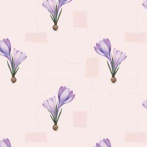 spring botanical