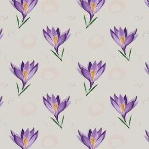 Crocus Bloom