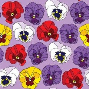 violtes