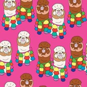 alpaca pink