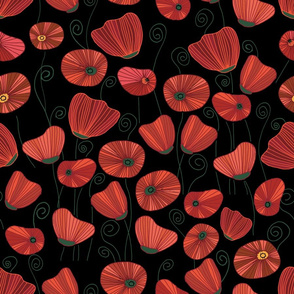 Black Poppy field