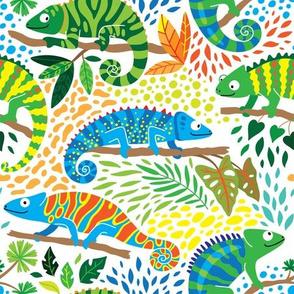 bright chameleon