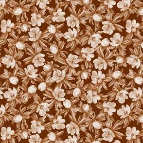 Eranthis brown multi