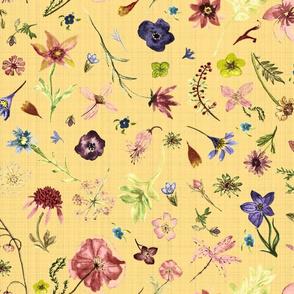 hand drawn flowers golden rod tex