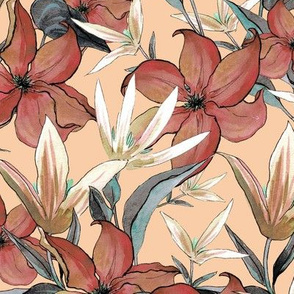 Clematis , Terracotta flowers on apricot background