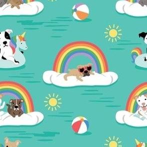 pitbulls on Rainbow Floaties - medium scale