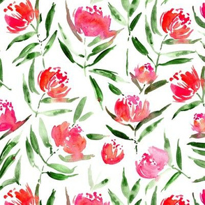 Peony bloom in Florence - smaller scale - watercolor peonies - painted florals for modern home decor p337
