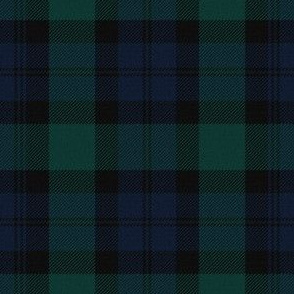 Blackwatch Tartan ~ Traditional Textured  ~ Medium