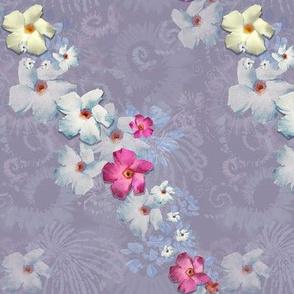 Medium Size of Mandevilla on Dusty Lilac Background