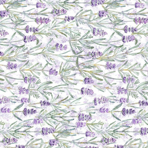 Lavender // Rotated