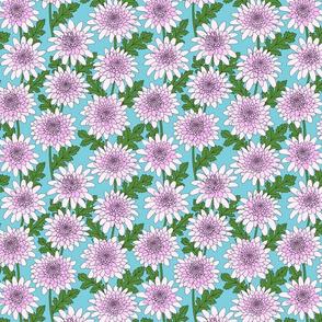 mauve chrysanthemum line drawing floral on aqua blue