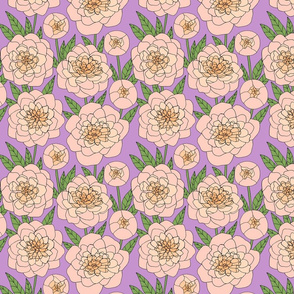 peach peony line drawing floral on lilac purple