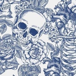 Toile de jouy floral skeleton