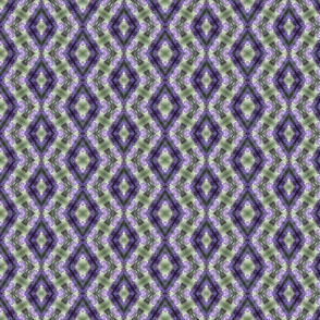 lavender lattice