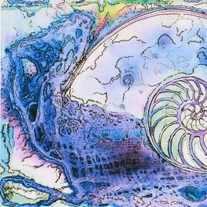 Nautilus Dance 2