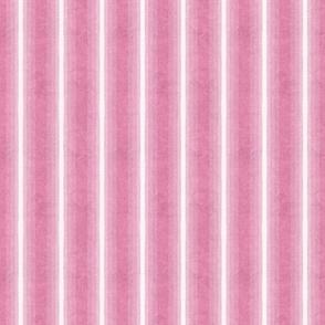 Gradient Vertical Stripe Bubblegum Texture