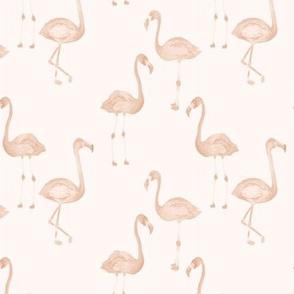 Tropical Summer Flamingos