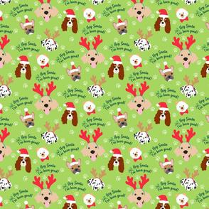 Hey Santa in Green!