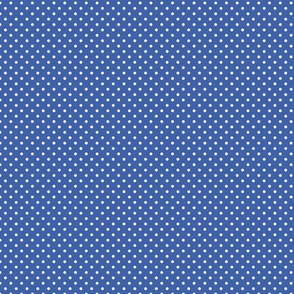 Blue With White Polka Dots - Small (Rainbow Collection)