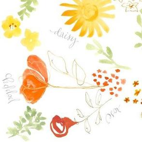 daisy lily poppy & rose